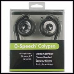B-SPEECH CALYPSO