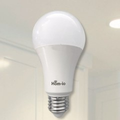 Lampadina Smart WiFi Bianca